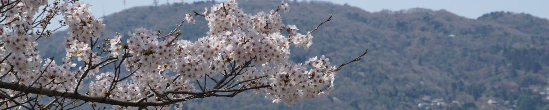 東生駒南自治会